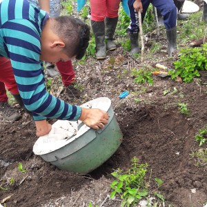 21. 20180410 Jason shows how to plant on a slope with the water saving Waterboxx plant cocoon