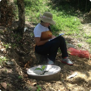 25. 20180326 Taking data in La Herradura from the Waterboxx plant cocoon