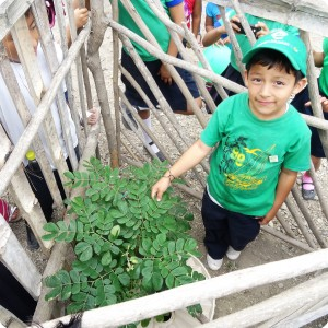 2. A student next to his planted tree
