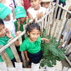 3. The students are proud of their trees