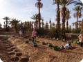 Wadi 1 2 and 3 with Groasis waterboxx s and trees ready for planting Oct 2016