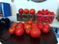 13. 20170727 All this harvest is from the same day from two plants that have been growing in the Waterboxx plant cocoon. 20 Big Beef tomatoes and 100 Juliet s  in the container