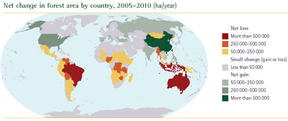 Picture with the annual change in forests in the world