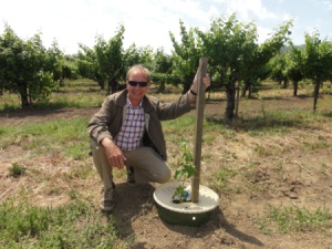 Pieter Hoff, who is sitting next to his invention the Groasis Waterboxx. In the Groasis Waterboxx is a support pole installed, who supports the tree during the growth.