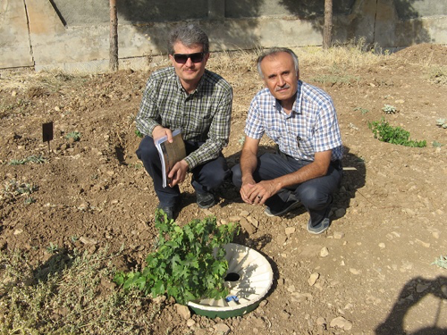 Planting trees with the Waterboxx in Iran in order to receive a high survival rate
