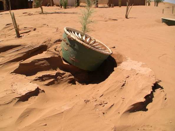 Sand storms in the Sahara Desert or other weather conditions - you can plant everywhere trees with the Waterboxx