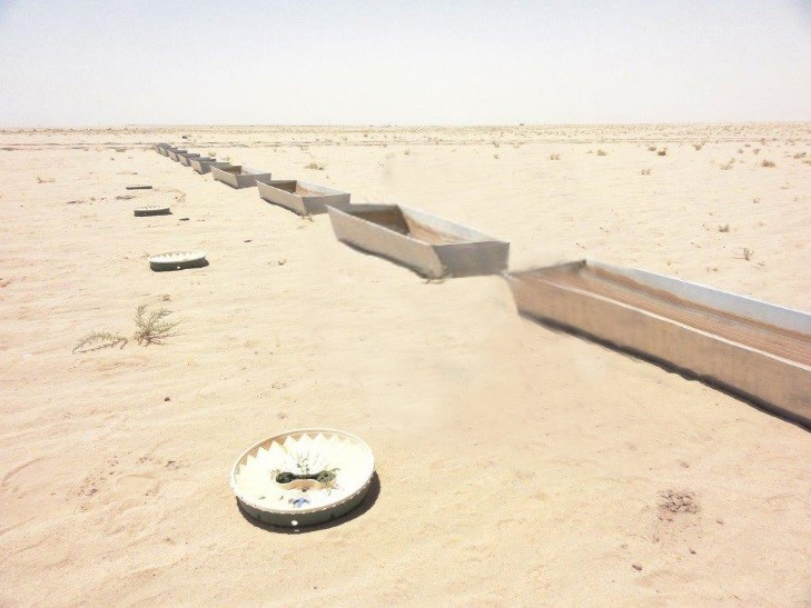 The water saving planting method of Groasis to plant trees in deserts (Kuwait) with a high survival rate