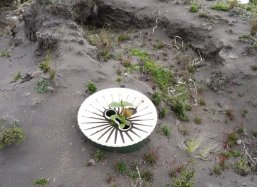 Strong winds cause places filled with ashes on and around the Waterboxx plantcocoon®