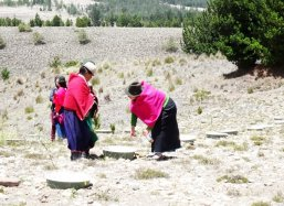 The woman play an important role in these agricultural communities