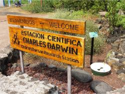 38 The Charles Darwin Foundation plants with the Groasis Technology because there are no springs wells on the Galapagos Islands