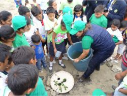 39 Tree planting competition Waterboxx plant cocoon in elementary school in Santa Helena Ecuador