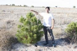 51 Five year old tree in the Los Monegros Desert Zaragosa Spain with biodegradable Waterboxx plant cocoon
