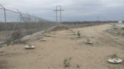 53 Ecuador desert of Santa Helena planting without irrigation for energy company Celec with Waterboxx plant cocoon