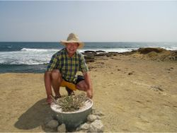 67 Pieter Hoff with Algarrobo tree on most difficult place of Earth Chocolatera cliff in Ecuador